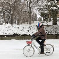 Pikeride Winter